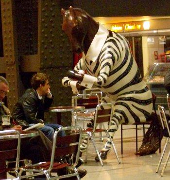 Tne Zebra